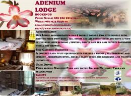 Adenium Lodge