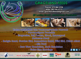 Graceland Feeds