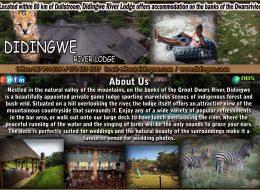 DIDINGWE RIVER LODGE  | LIMPOPO ACCOMMODATION