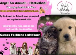 Angels for Animals | Henties-Bay