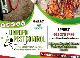 Limpopo Pest Control – Plaagbeheer Oplossings | Modimolle, Limpopo