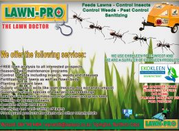 Lawn Pro | Upington, Northern Cape