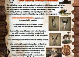 Hunters Pride Taxidermy   Witvlei, Namibia – Taxidermists in Namibia